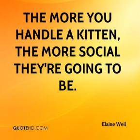 Elaine Weil - The more you handle a kitten, the more social they're going to be.