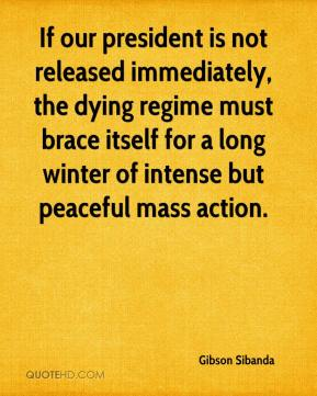 Gibson Sibanda - If our president is not released immediately, the dying regime must brace itself for a long winter of intense but peaceful mass action.