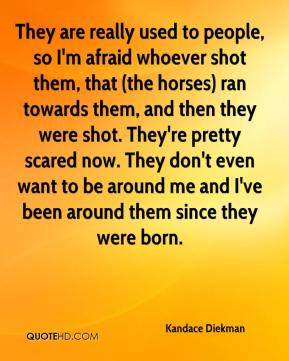 Kandace Diekman  - They are really used to people, so I'm afraid whoever shot them, that (the horses) ran towards them, and then they were shot. They're pretty scared now. They don't even want to be around me and I've been around them since they were born.
