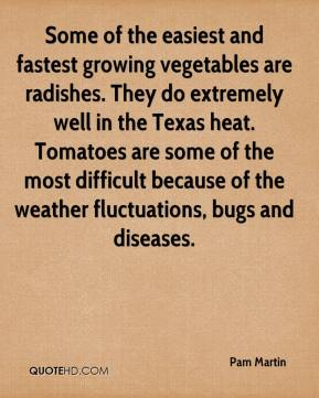 Some of the easiest and fastest growing vegetables are radishes. They do extremely well in the Texas heat. Tomatoes are some of the most difficult because of the weather fluctuations, bugs and diseases.