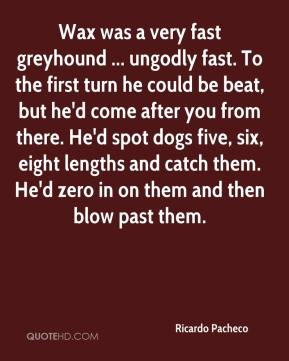 Ricardo Pacheco  - Wax was a very fast greyhound ... ungodly fast. To the first turn he could be beat, but he'd come after you from there. He'd spot dogs five, six, eight lengths and catch them. He'd zero in on them and then blow past them.