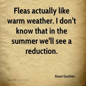 Fleas actually like warm weather. I don't know that in the summer we'll see a reduction.