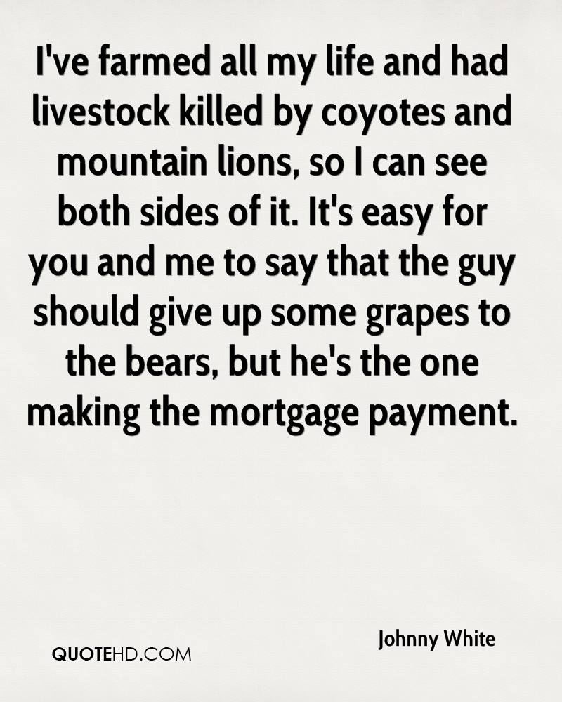 I've farmed all my life and had livestock killed by coyotes and mountain lions, so I can see both sides of it. It's easy for you and me to say that the guy should give up some grapes to the bears, but he's the one making the mortgage payment.