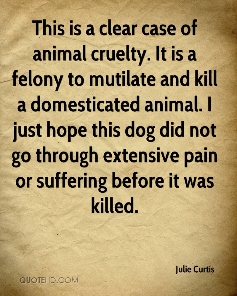 Animal Cruelty Quotes Julie Curtis Quotes  Quotehd