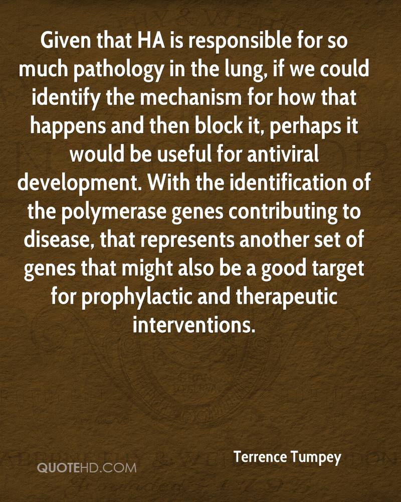 Given that HA is responsible for so much pathology in the lung, if we could identify the mechanism for how that happens and then block it, perhaps it would be useful for antiviral development. With the identification of the polymerase genes contributing to disease, that represents another set of genes that might also be a good target for prophylactic and therapeutic interventions.