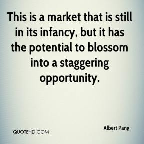 Albert Pang - This is a market that is still in its infancy, but it has the potential to blossom into a staggering opportunity.
