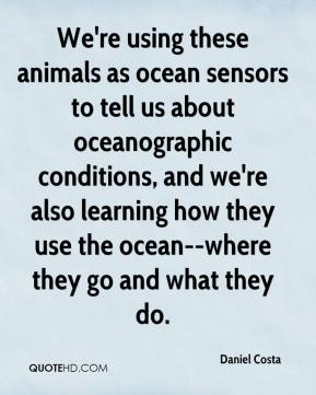 Daniel Costa - We're using these animals as ocean sensors to tell us about oceanographic conditions, and we're also learning how they use the ocean--where they go and what they do.