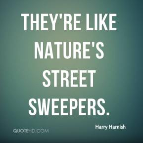 They're like nature's street sweepers.