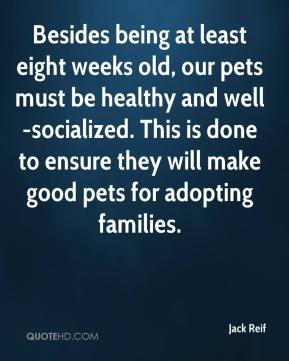 Besides being at least eight weeks old, our pets must be healthy and well-socialized. This is done to ensure they will make good pets for adopting families.