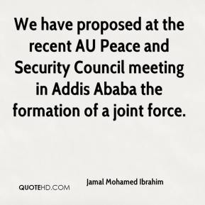 Jamal Mohamed Ibrahim - We have proposed at the recent AU Peace and Security Council meeting in Addis Ababa the formation of a joint force.