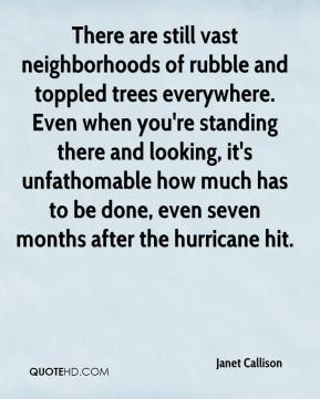 Janet Callison  - There are still vast neighborhoods of rubble and toppled trees everywhere. Even when you're standing there and looking, it's unfathomable how much has to be done, even seven months after the hurricane hit.