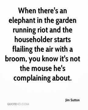 Jim Sutton  - When there's an elephant in the garden running riot and the householder starts flailing the air with a broom, you know it's not the mouse he's complaining about.