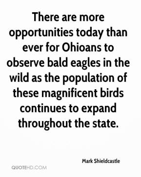 There are more opportunities today than ever for Ohioans to observe bald eagles in the wild as the population of these magnificent birds continues to expand throughout the state.