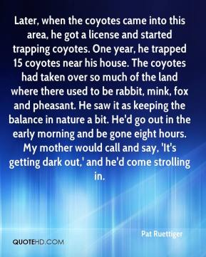 Pat Ruettiger  - Later, when the coyotes came into this area, he got a license and started trapping coyotes. One year, he trapped 15 coyotes near his house. The coyotes had taken over so much of the land where there used to be rabbit, mink, fox and pheasant. He saw it as keeping the balance in nature a bit. He'd go out in the early morning and be gone eight hours. My mother would call and say, 'It's getting dark out,' and he'd come strolling in.