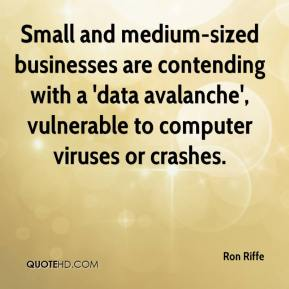 Ron Riffe  - Small and medium-sized businesses are contending with a 'data avalanche', vulnerable to computer viruses or crashes.