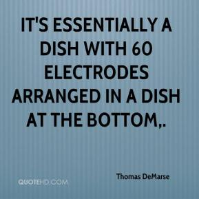 Thomas DeMarse  - It's essentially a dish with 60 electrodes arranged in a dish at the bottom.