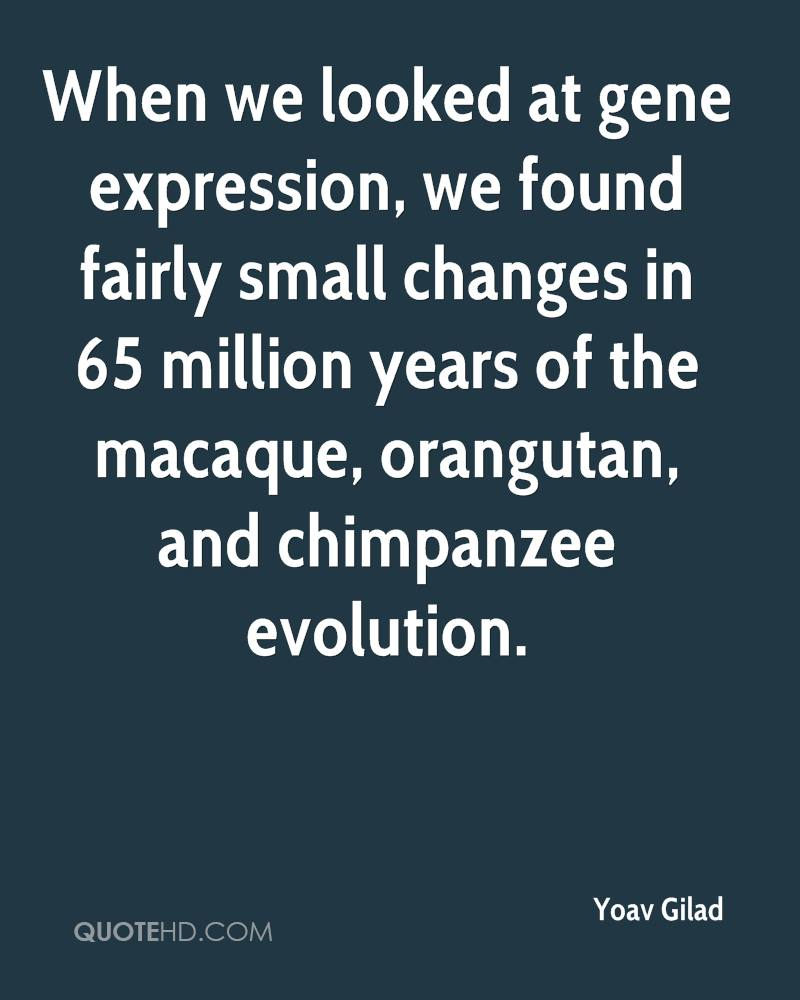 When we looked at gene expression, we found fairly small changes in 65 million years of the macaque, orangutan, and chimpanzee evolution.