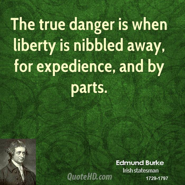 The true danger is when liberty is nibbled away, for expedience, and by parts.