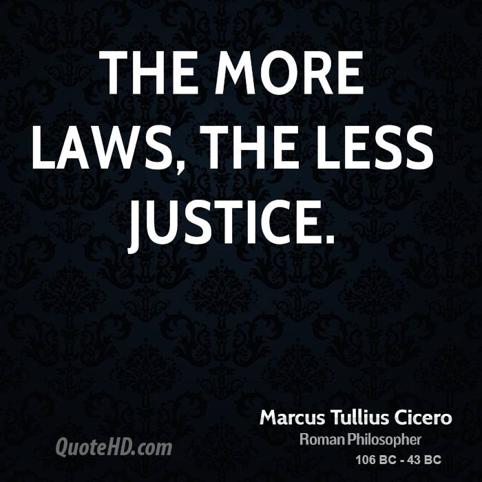 the more laws the less justice If punishment were to the be the main focus of the juvenile justice system there would need to be more law enforcement hired, they would also need to be updated on the procedures concerning this they would have a more active role to play.