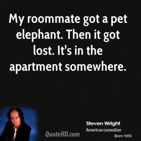 My roommate got a pet elephant. Then it got lost. It's in the apartment somewhere.