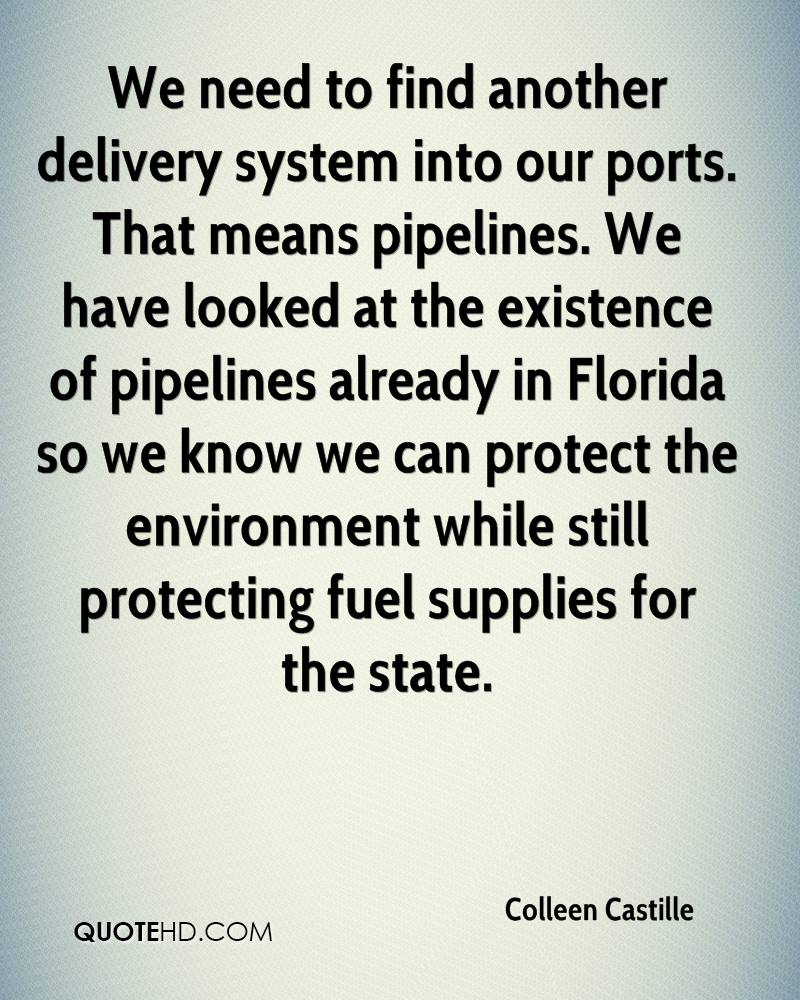 We need to find another delivery system into our ports. That means pipelines. We have looked at the existence of pipelines already in Florida so we know we can protect the environment while still protecting fuel supplies for the state.