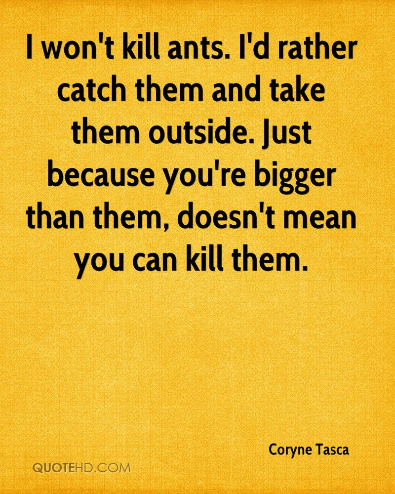 I won't kill ants. I'd rather catch them and take them outside. Just because you're bigger than them, doesn't mean you can kill them.