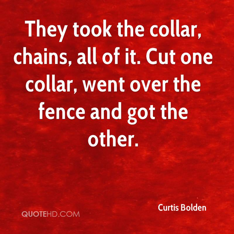 They took the collar, chains, all of it. Cut one collar, went over the fence and got the other.