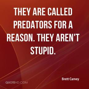 Brett Carney - They are called predators for a reason. They aren't stupid.