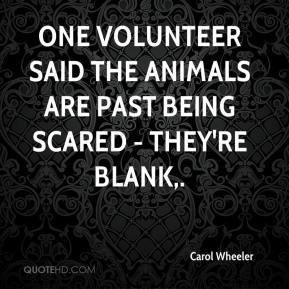 Carol Wheeler - One volunteer said the animals are past being scared - they're blank.