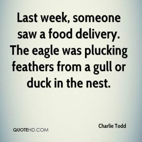 Charlie Todd - Last week, someone saw a food delivery. The eagle was plucking feathers from a gull or duck in the nest.