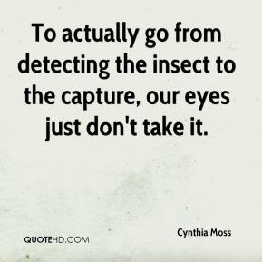 To actually go from detecting the insect to the capture, our eyes just don't take it.