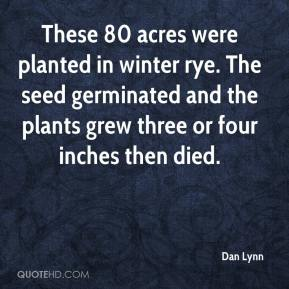 These 80 acres were planted in winter rye. The seed germinated and the plants grew three or four inches then died.