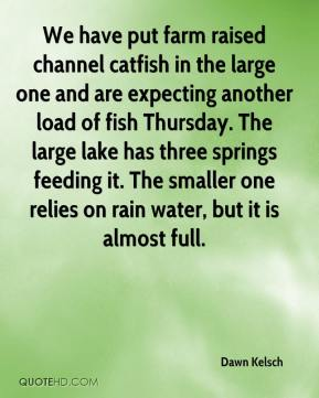 Dawn Kelsch - We have put farm raised channel catfish in the large one and are expecting another load of fish Thursday. The large lake has three springs feeding it. The smaller one relies on rain water, but it is almost full.