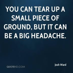 Josh Ward  - You can tear up a small piece of ground, but it can be a big headache.