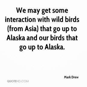 Mark Drew  - We may get some interaction with wild birds (from Asia) that go up to Alaska and our birds that go up to Alaska.