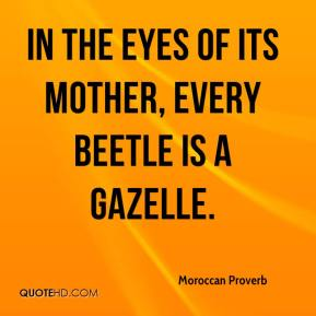 Moroccan Proverb  - In the eyes of its mother, every beetle is a gazelle.