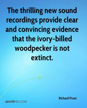 Richard Prum  - The thrilling new sound recordings provide clear and convincing evidence that the ivory-billed woodpecker is not extinct.
