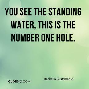 Roebalin Bustamante  - You see the standing water, this is the number one hole.
