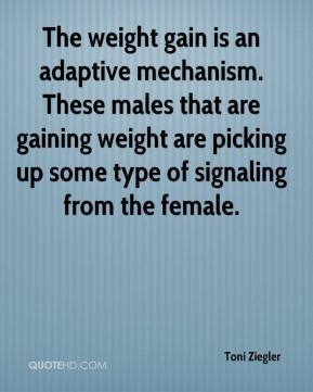 Toni Ziegler  - The weight gain is an adaptive mechanism. These males that are gaining weight are picking up some type of signaling from the female.