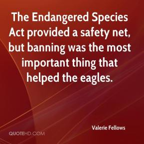Valerie Fellows  - The Endangered Species Act provided a safety net, but banning was the most important thing that helped the eagles.
