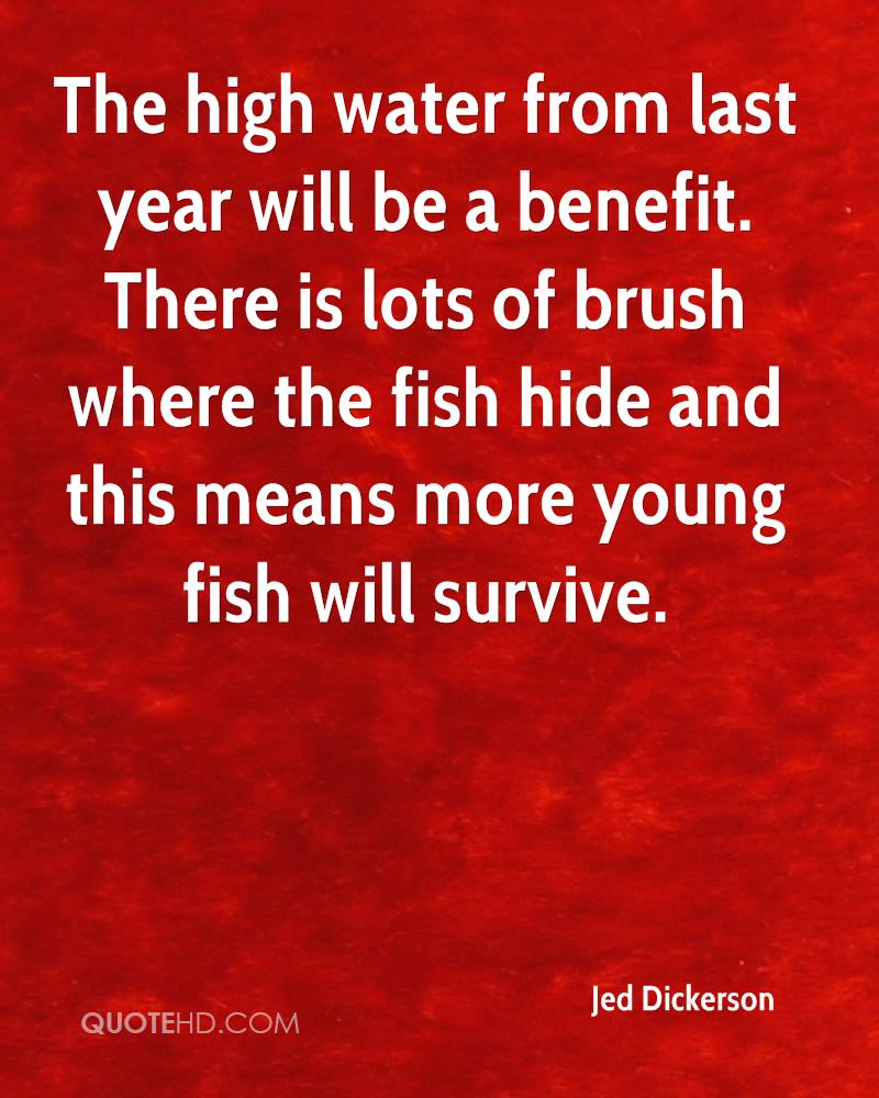 The high water from last year will be a benefit. There is lots of brush where the fish hide and this means more young fish will survive.