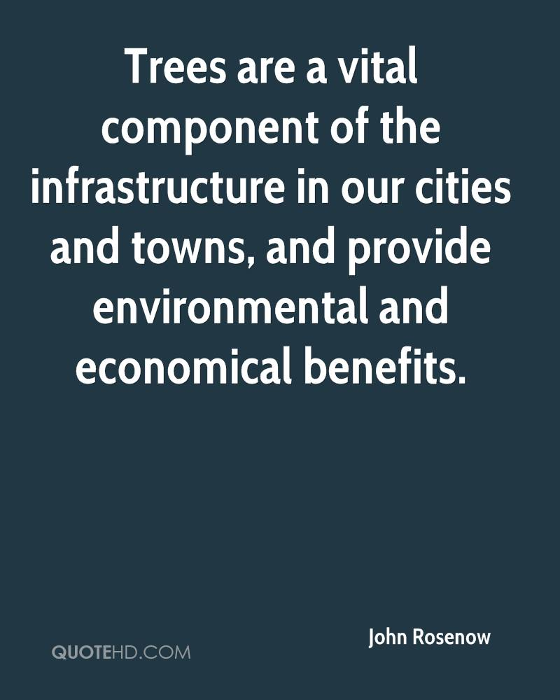 Trees are a vital component of the infrastructure in our cities and towns, and provide environmental and economical benefits.