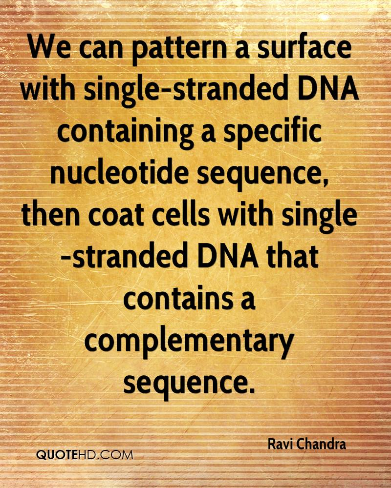 We can pattern a surface with single-stranded DNA containing a specific nucleotide sequence, then coat cells with single-stranded DNA that contains a complementary sequence.