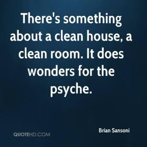 Brian Sansoni - There's something about a clean house, a clean room. It does wonders for the psyche.