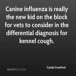 Cynda Crawford - Canine influenza is really the new kid on the block for vets to consider in the differential diagnosis for kennel cough.