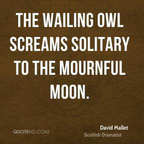 David Mallet - The wailing owl Screams solitary to the mournful moon.