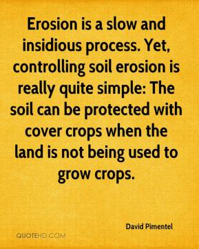 David Pimentel - Erosion is a slow and insidious process. Yet, controlling soil erosion is really quite simple: The soil can be protected with cover crops when the land is not being used to grow crops.