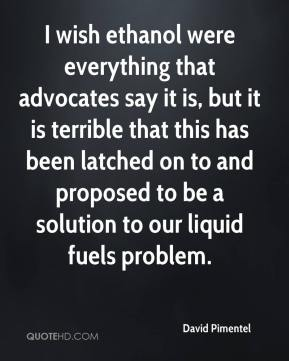 David Pimentel - I wish ethanol were everything that advocates say it is, but it is terrible that this has been latched on to and proposed to be a solution to our liquid fuels problem.