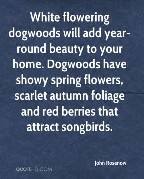 John Rosenow  - White flowering dogwoods will add year-round beauty to your home. Dogwoods have showy spring flowers, scarlet autumn foliage and red berries that attract songbirds.