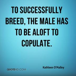 Kathleen O'Malley  - To successfully breed, the male has to be aloft to copulate.